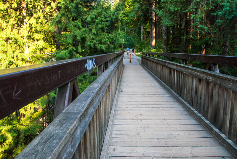 Old Pipe Bridge in Lynn Valley & Cross the Old Pipe Bridge in Lynn Canyon Park -